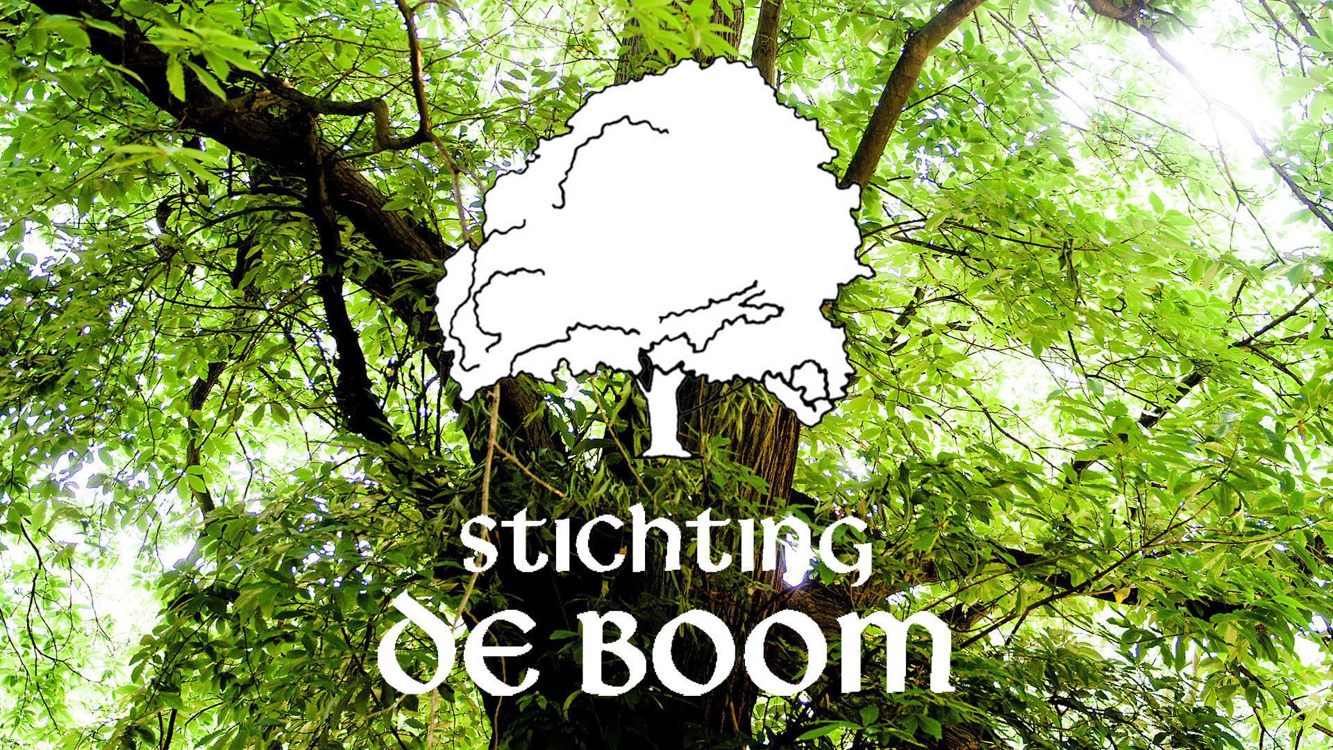 Stichting de Boom